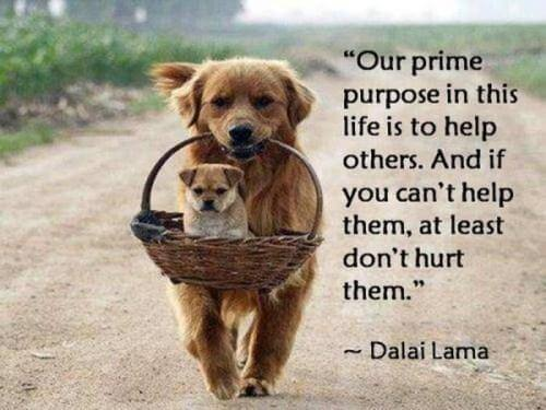 inspirational-life-quotes-2