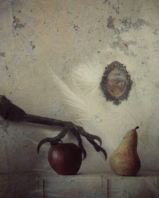 laura-silvestre-bataller-9
