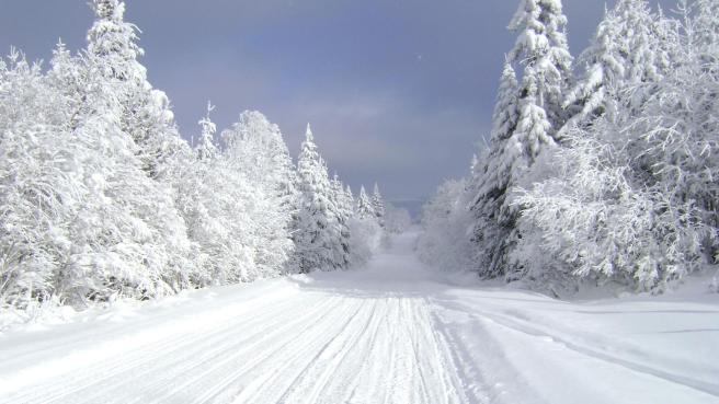 snowmobiletrail.jpg